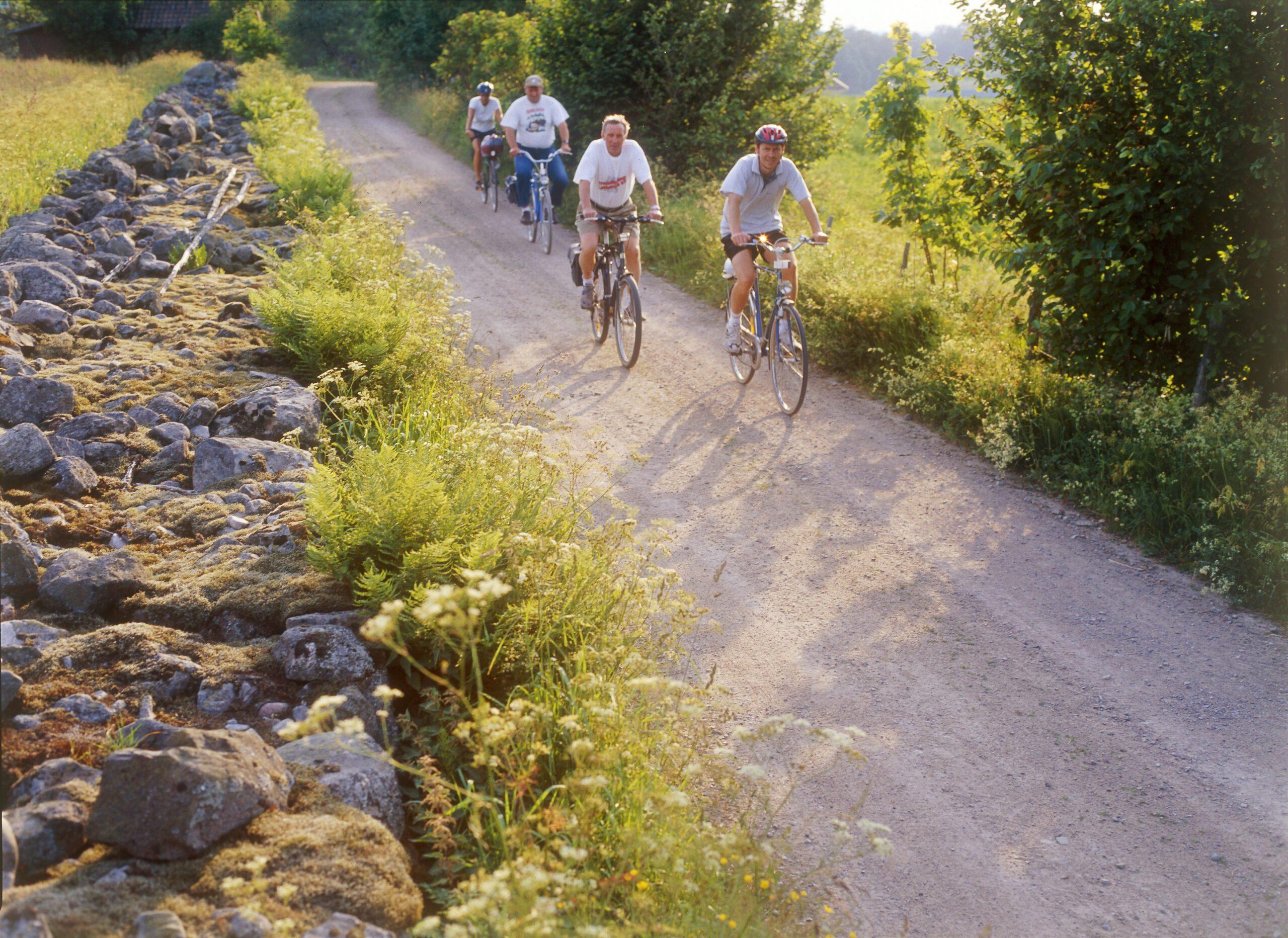 Grupp människor som cyklar