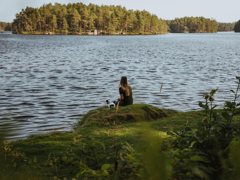Vy över Stora Hammarsjön när man går vandringsleden Hammarsjön runt
