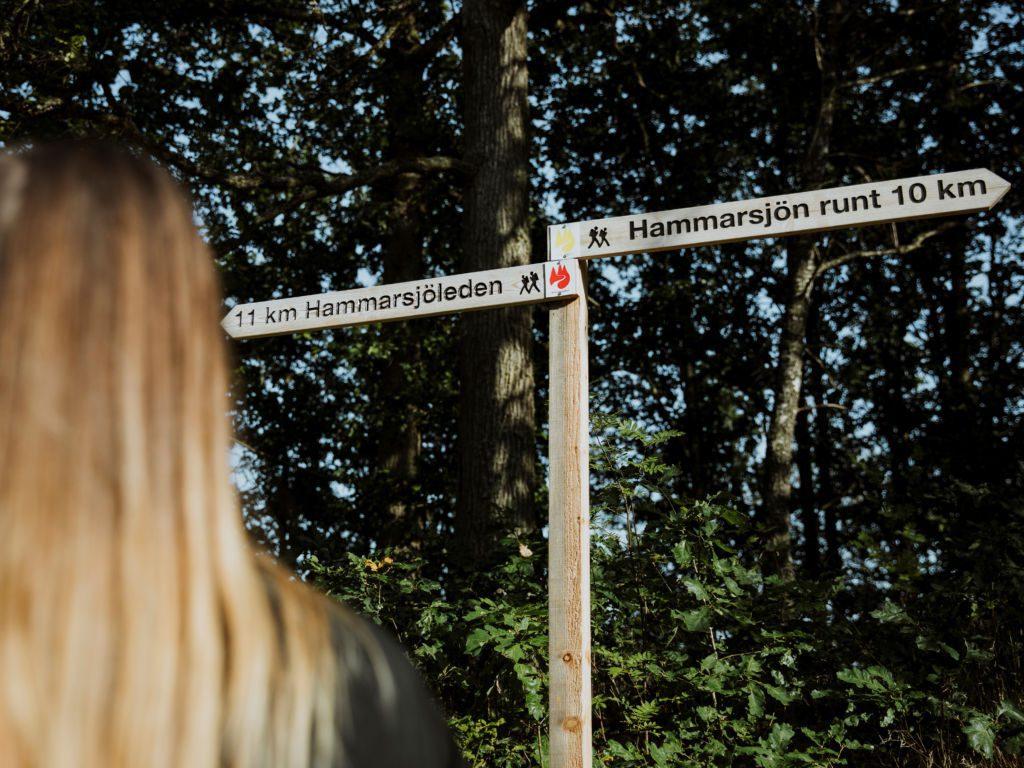 Hammersjon حوالي 10 كم