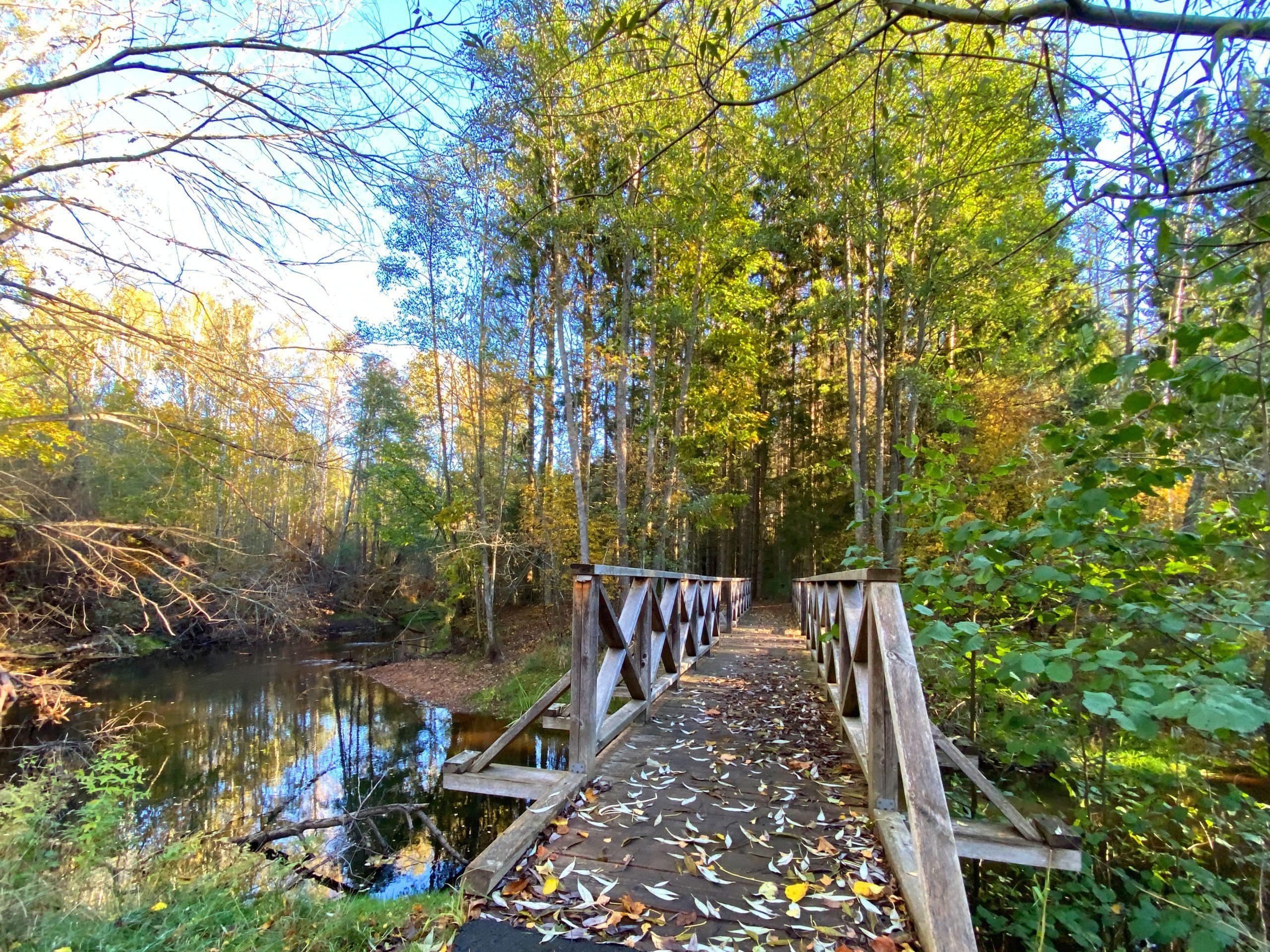 En bro till Hulingsryds naturreservat