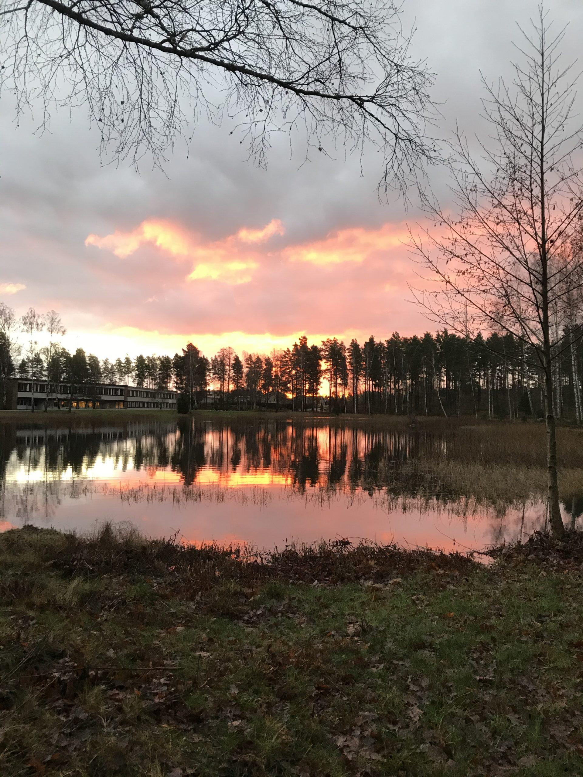Dammen i rosa skimmer Hellen Andersson scaled