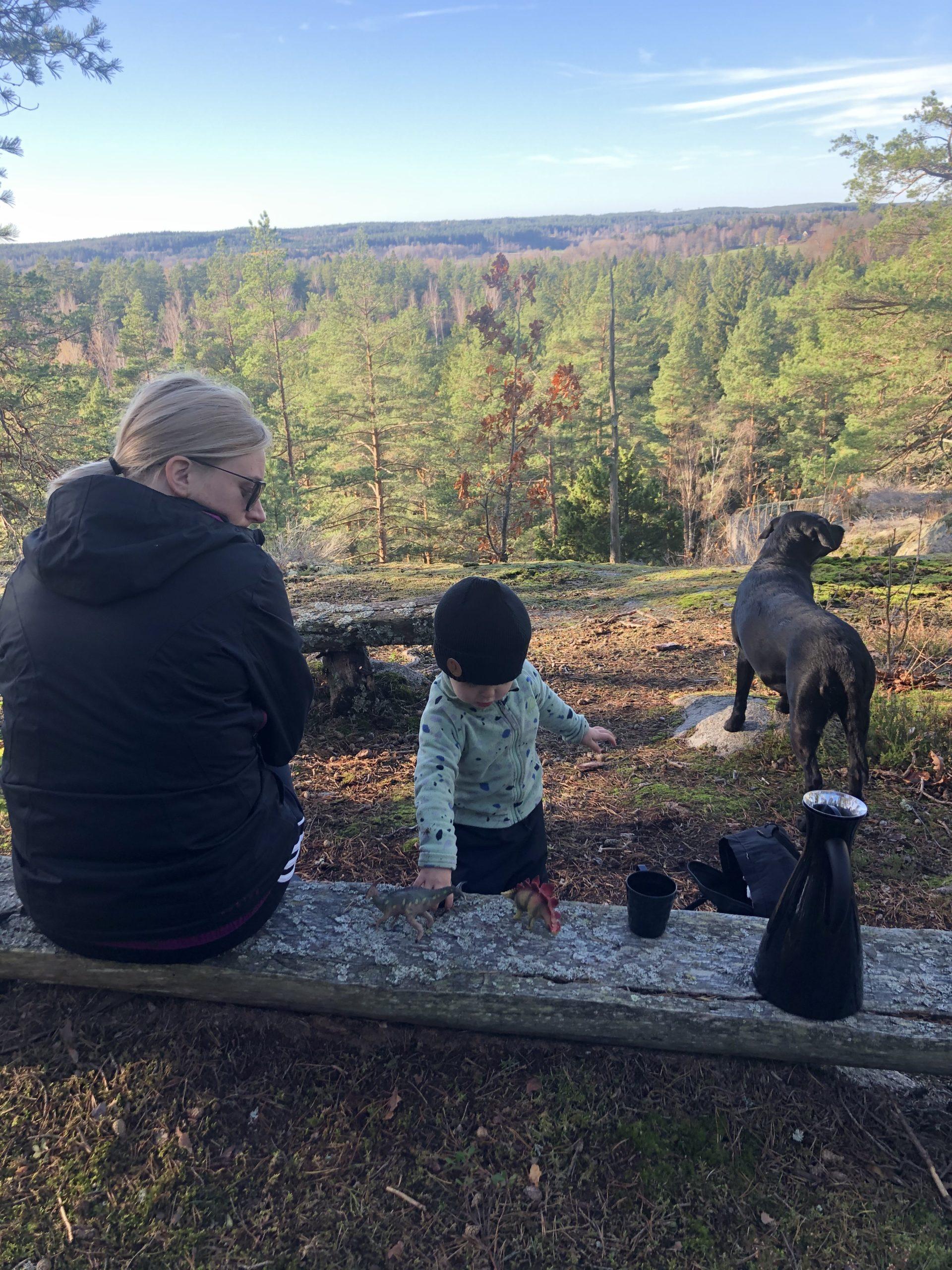 Kubuda kwemhuri nemaonero naJulia Ingmarsson