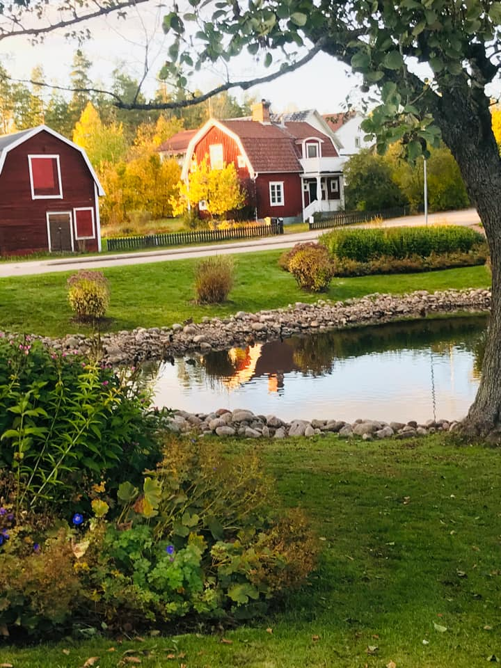 Dammen i hagadalsparken
