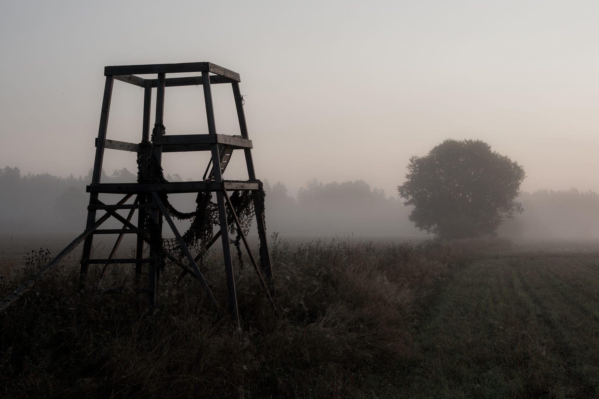 Morgondis över vakttorn på äng