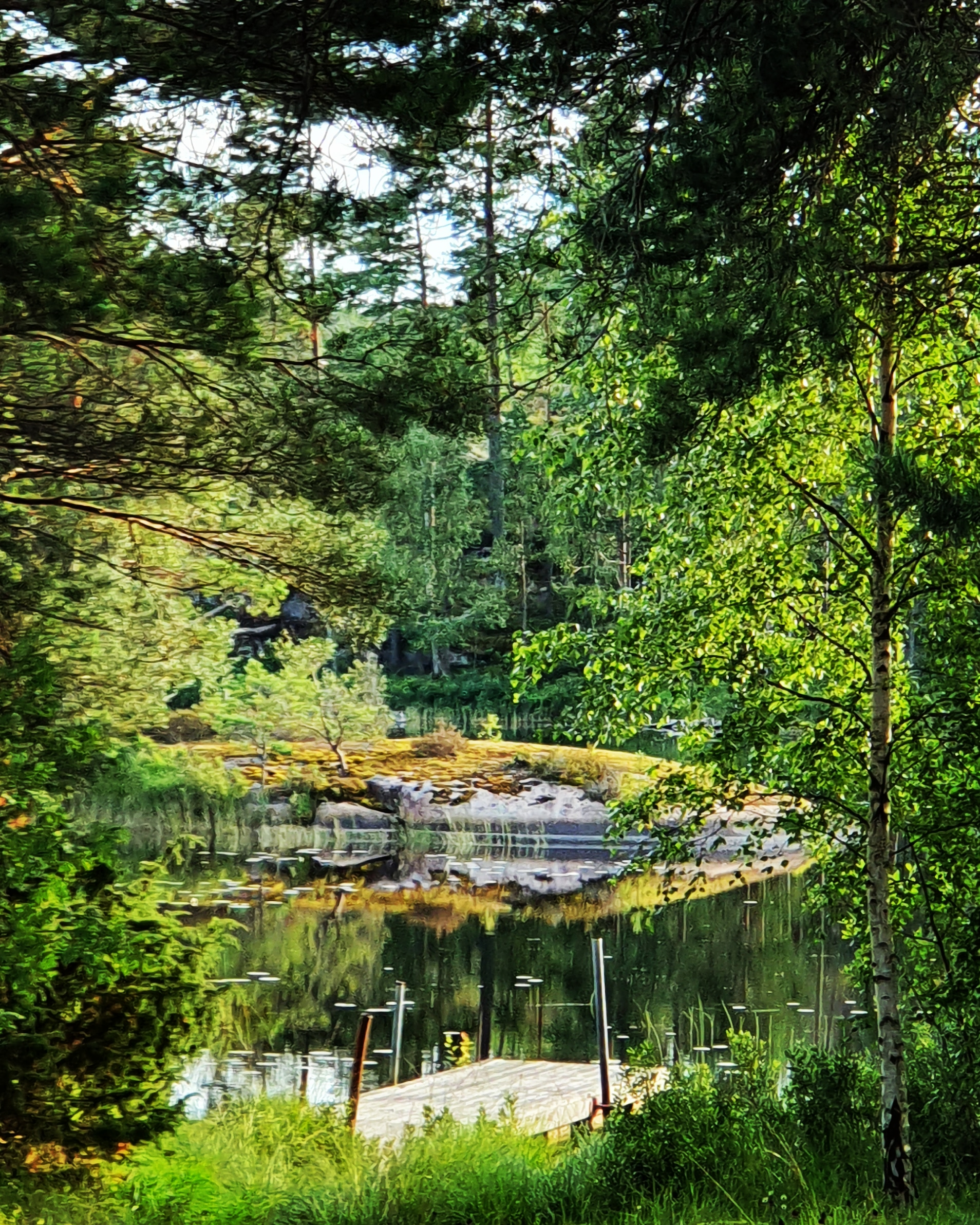 Vacker skymt genom skogen vid Örsjön