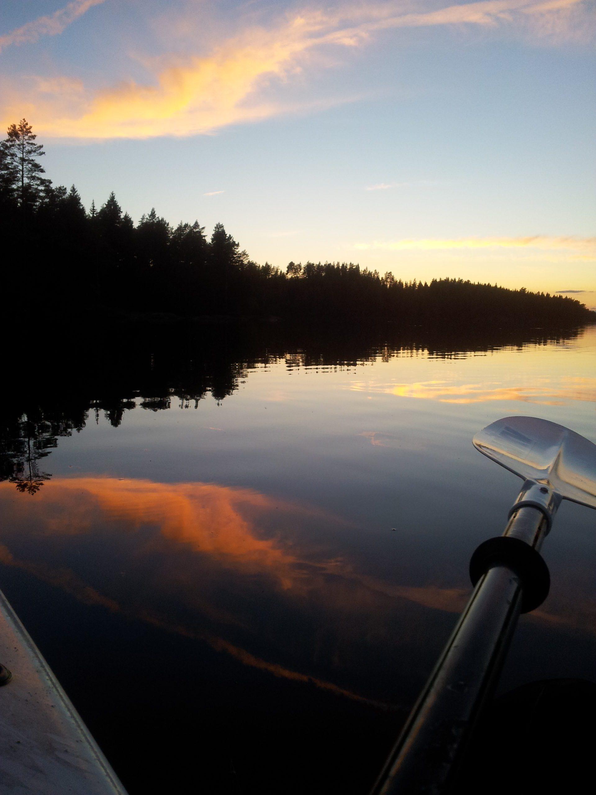 Paddelåra i sjö längs nattsvart skog