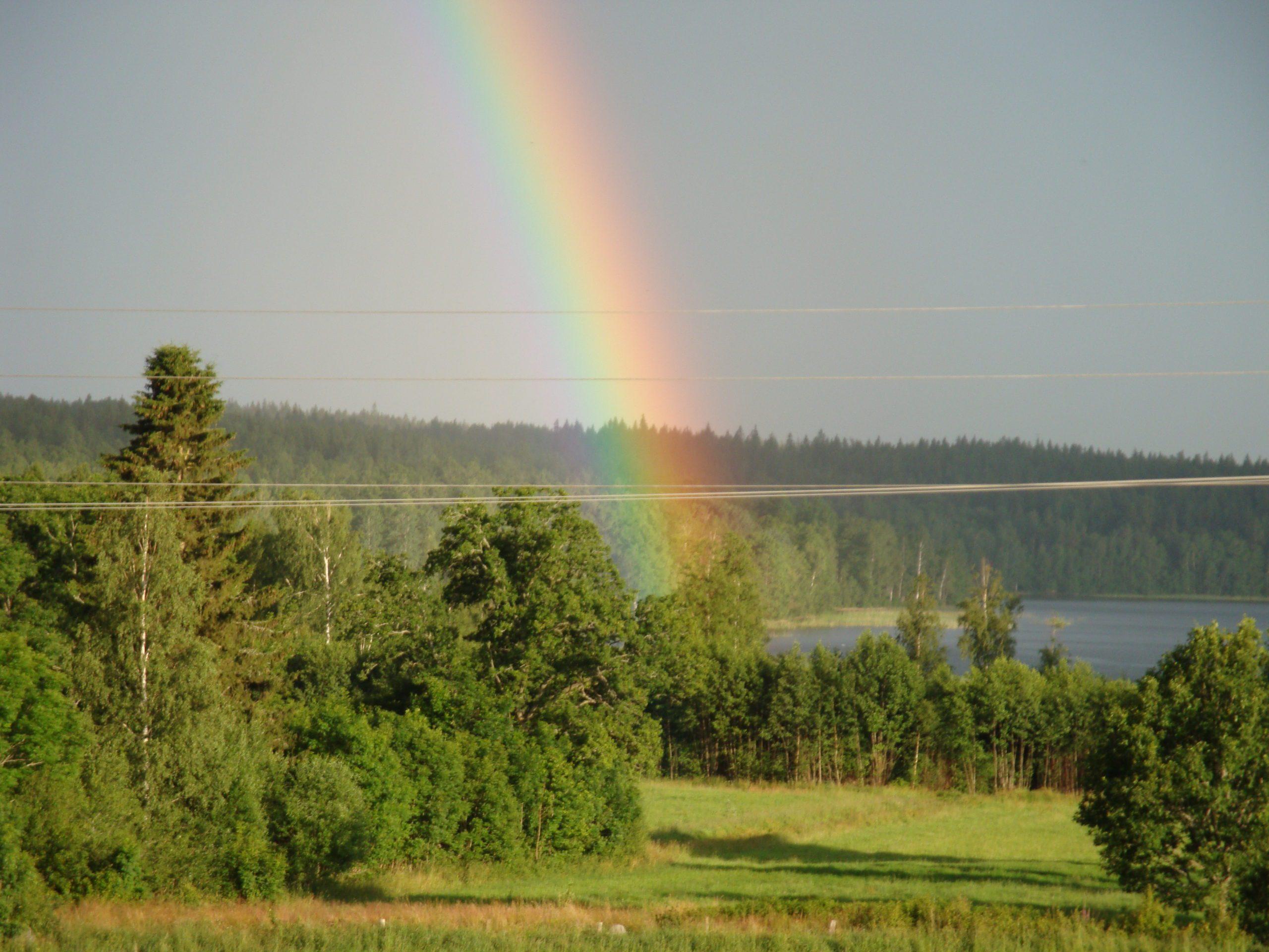 Regnbåge över sjö, äng och skog