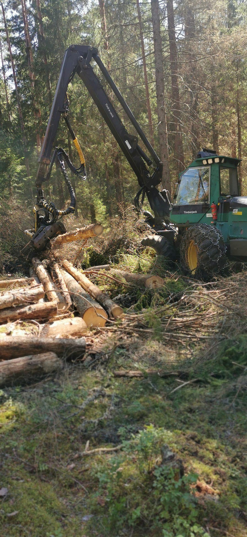 Skogsavverkning med skogsmaskin