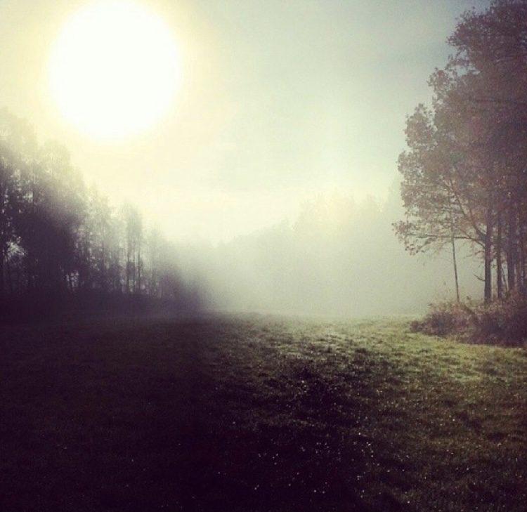 Sommardis en tidig morgon
