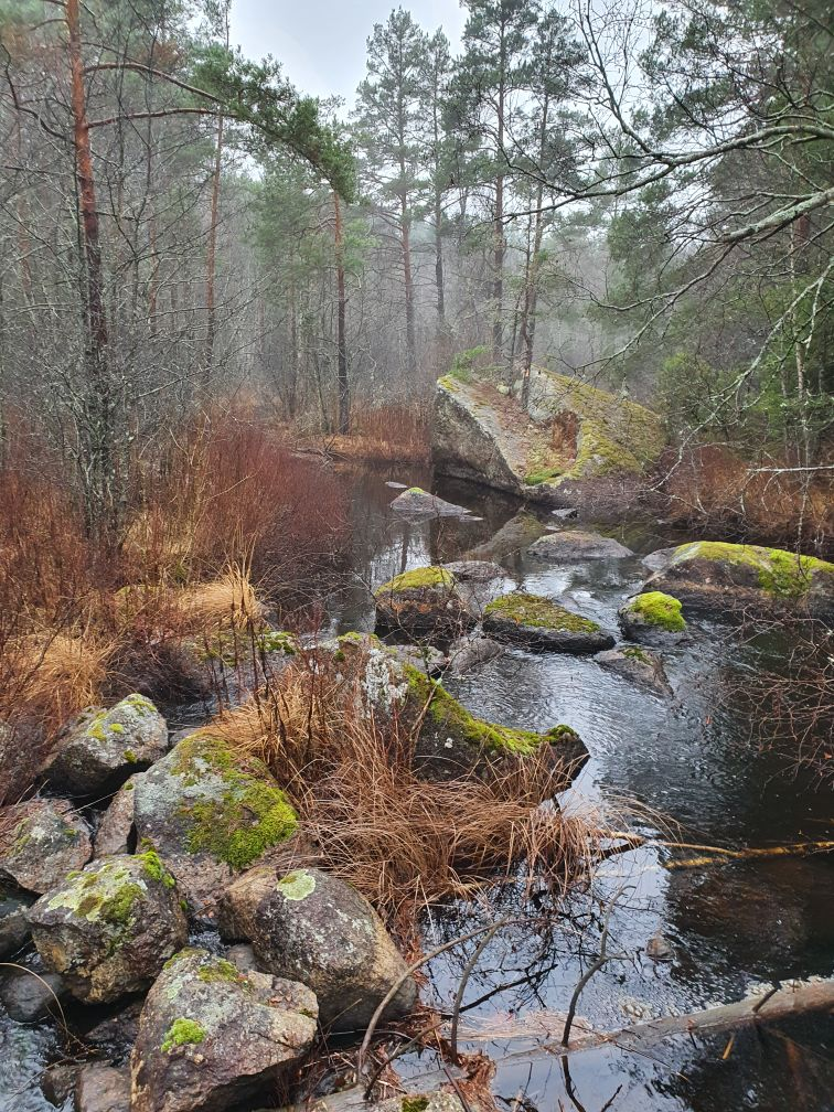 Vattenflöde i en stenig å