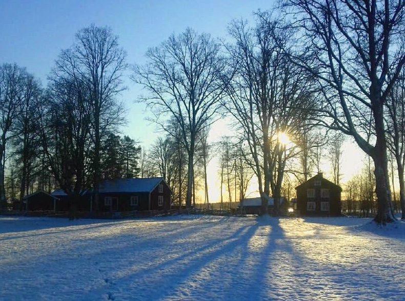 Snöig dag bland hus i Hembygdsparken