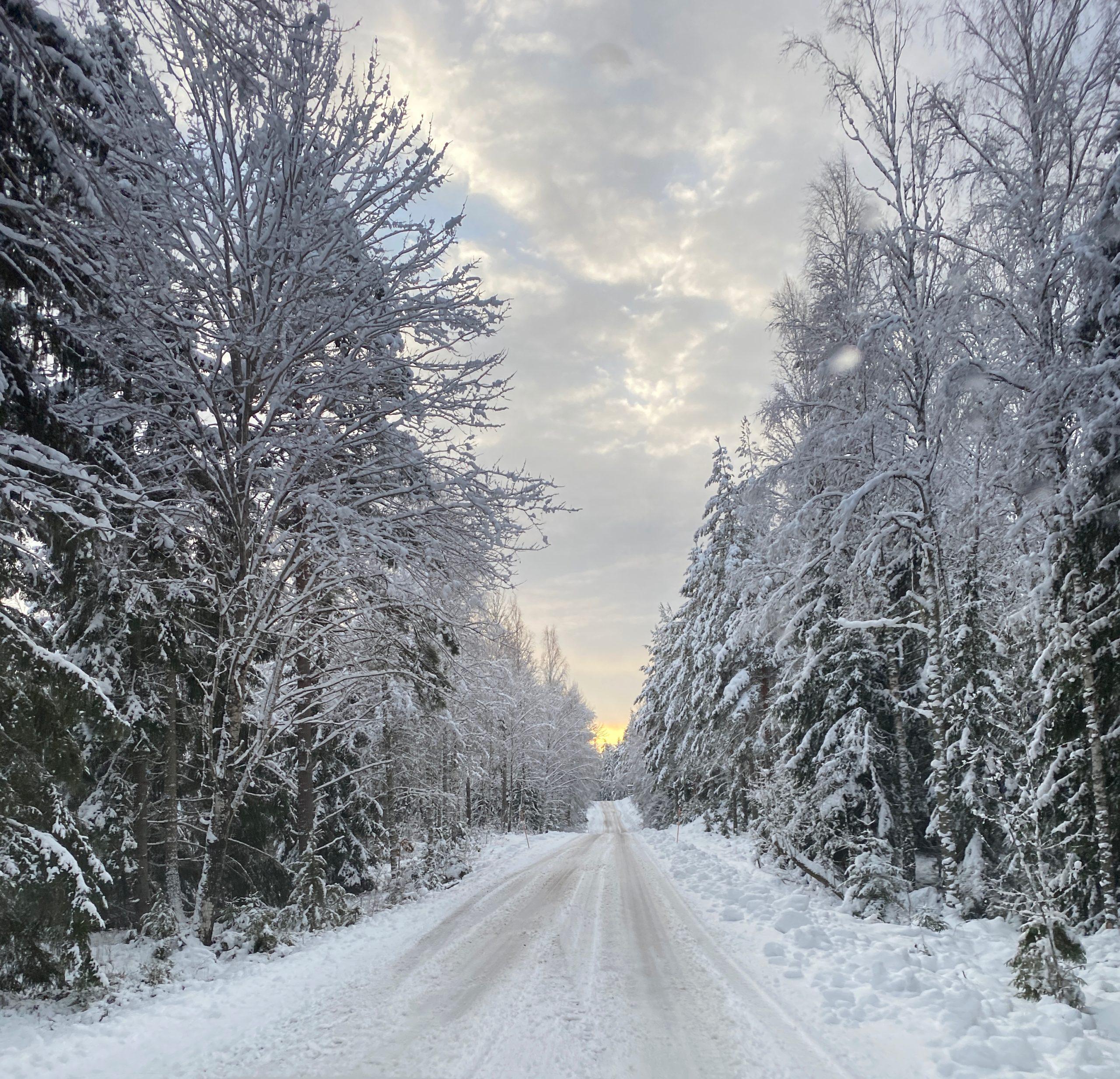 På väg till Stora Hammarsjöområdet