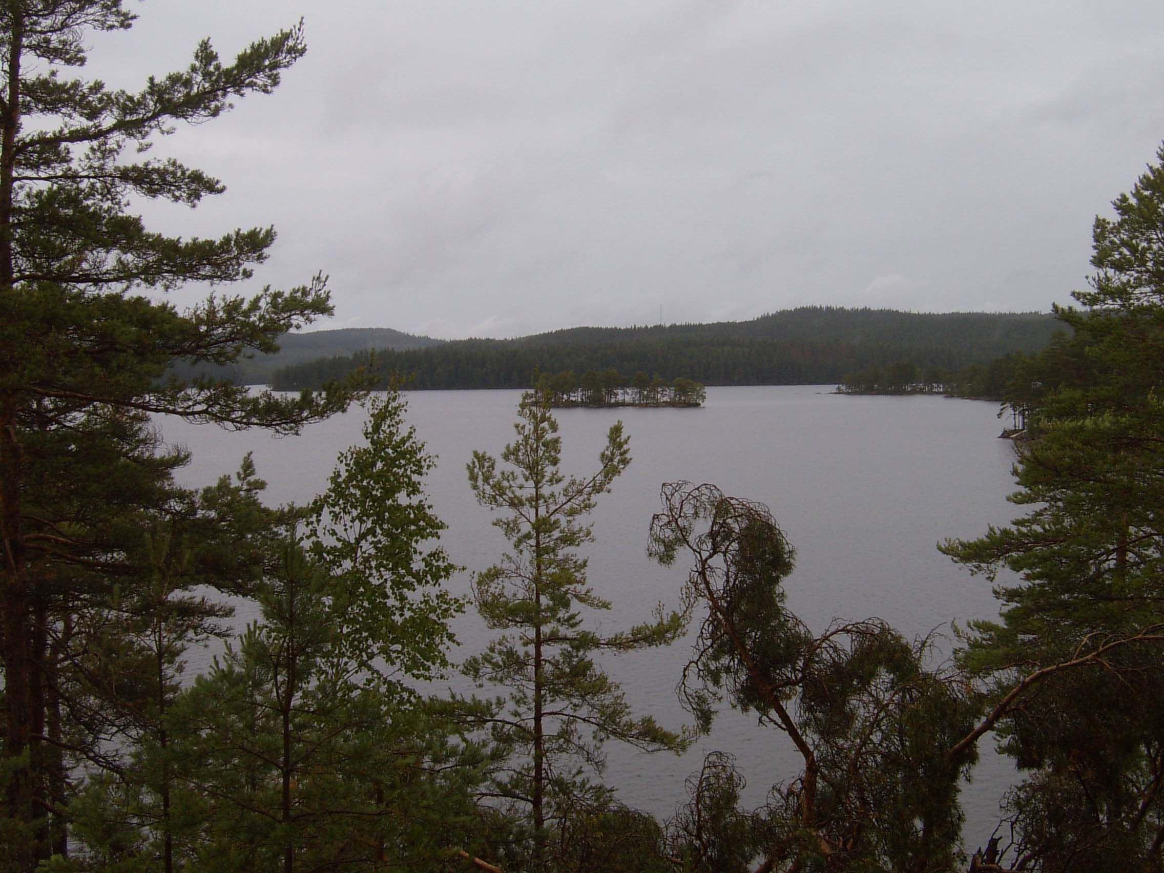 Вид на озеро Липа